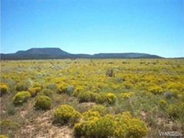 0000 Wrangler Ridge Road, Seligman, AZ 86337 (MLS #952759) :: The Lander Team