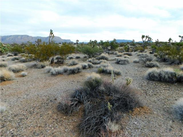 855 W Parkview Drive, Meadview, AZ 86444 (MLS #953390) :: The Lander Team