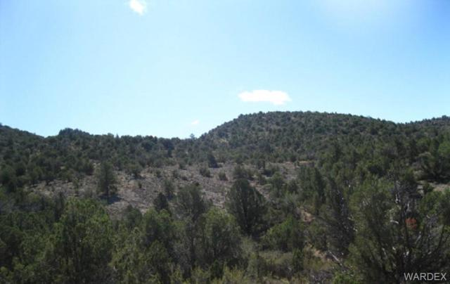 0 Mohave Kid/Crooked Trail Road, Kingman, AZ 86401 (MLS #953564) :: The Lander Team