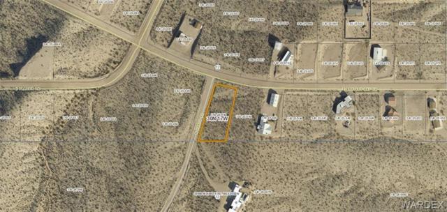 1100 E Bradley Bay Drive, Meadview, AZ 86444 (MLS #953699) :: The Lander Team