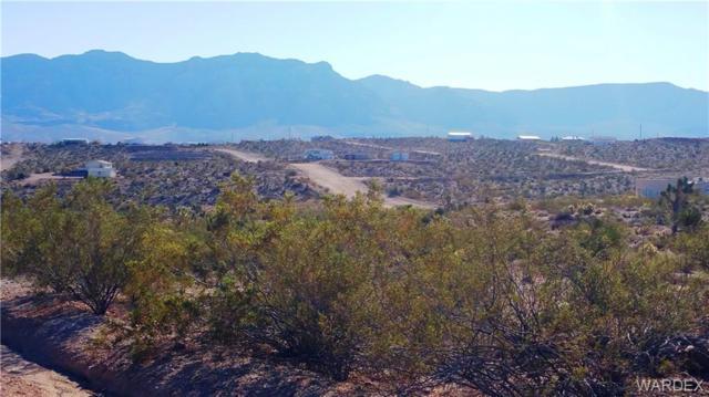 720 E Vulcan Drive, Meadview, AZ 86444 (MLS #953748) :: The Lander Team