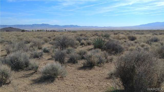 Lot 253 Calle Puebla/Avenida Palma, Kingman, AZ 86409 (MLS #953768) :: The Lander Team