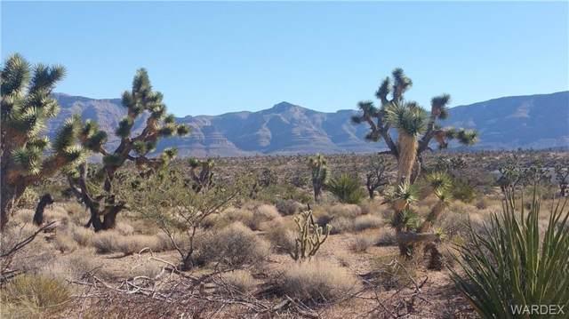 28300 N Sandview Drive, Meadview, AZ 86444 (MLS #954138) :: The Lander Team