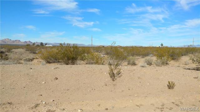 2 lots Oatman Highway, Golden Valley, AZ 86413 (MLS #954742) :: The Lander Team