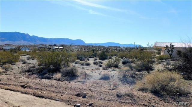 170 E Spencer Drive, Meadview, AZ 86444 (MLS #955193) :: The Lander Team