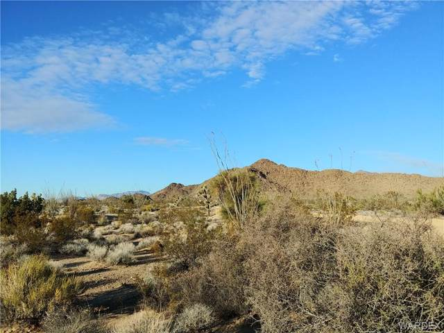 -2621 Cattle Crossing Road, Yucca, AZ 86438 (MLS #955598) :: The Lander Team