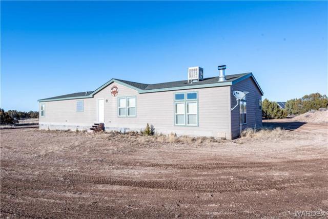 40229 N Carson Trail, Seligman, AZ 86337 (MLS #955712) :: The Lander Team
