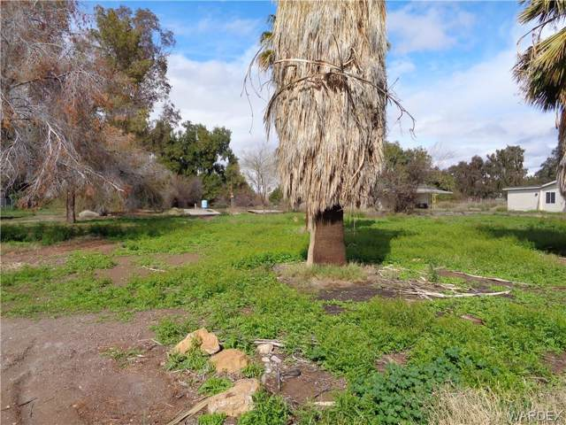2037 E Regents Road, Mohave Valley, AZ 86440 (MLS #956090) :: The Lander Team