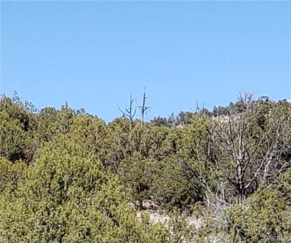 0000 E Willow Creek Ranch Road, Kingman, AZ 86401 (MLS #956133) :: The Lander Team