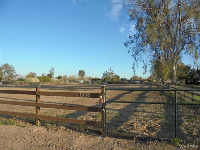 1645 E. Ironwood Dr., Mohave Valley, AZ 86440 (MLS #956582) :: The Lander Team