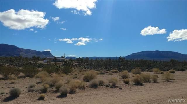27261 N Sandy Point Drive, Meadview, AZ 86444 (MLS #956868) :: The Lander Team