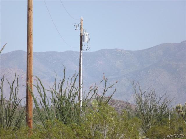 3048C S Ray Road, Yucca, AZ 86438 (MLS #956874) :: The Lander Team