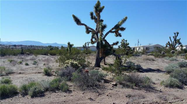 330 E Stanton Drive, Meadview, AZ 86444 (MLS #956903) :: The Lander Team