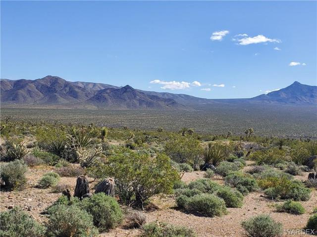 Lots 2941 & 2942 Imperial Drive, Meadview, AZ 86444 (MLS #957218) :: The Lander Team