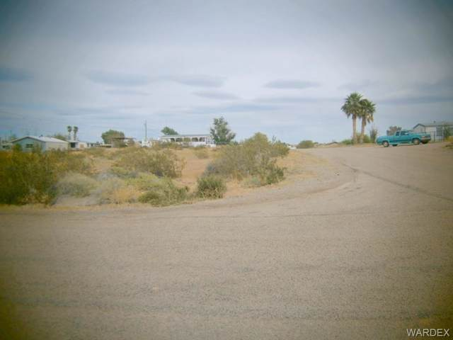 4657 E Pinta Drive, Topock/Golden Shores, AZ 86436 (MLS #957383) :: The Lander Team