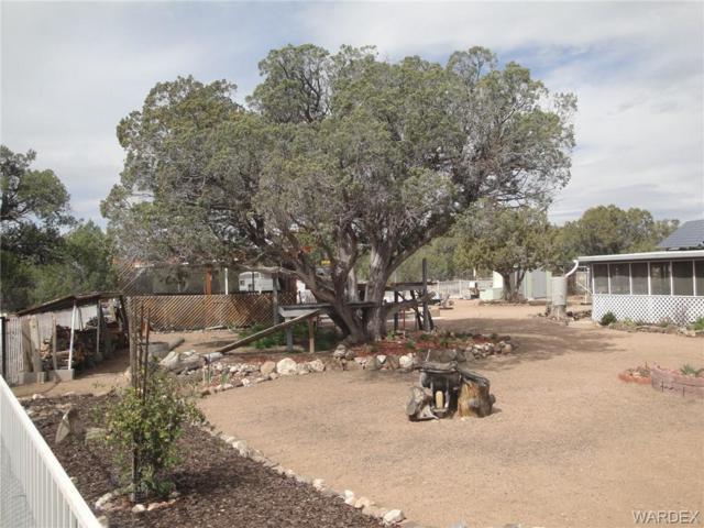0000 Mckenzie Drive, Kingman, AZ 86402 (MLS #957388) :: The Lander Team