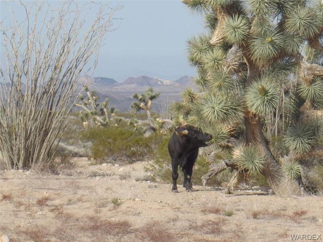 0000 Carrow Road, Yucca, AZ 86438 (MLS #957543) :: The Lander Team
