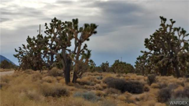 27386 N Driftwood Drive, Meadview, AZ 86444 (MLS #957722) :: The Lander Team