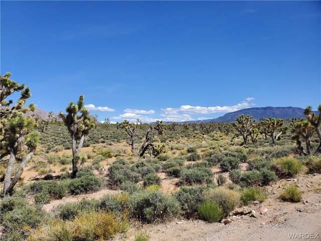 27211 & 27195 N Sandy Point Drive, Meadview, AZ 86444 (MLS #957884) :: The Lander Team