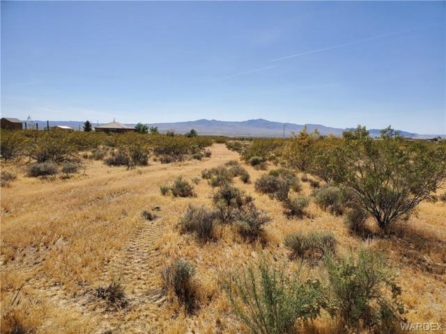 Lot 107 Fern Drive, Dolan Springs, AZ 86441 (MLS #957888) :: The Lander Team