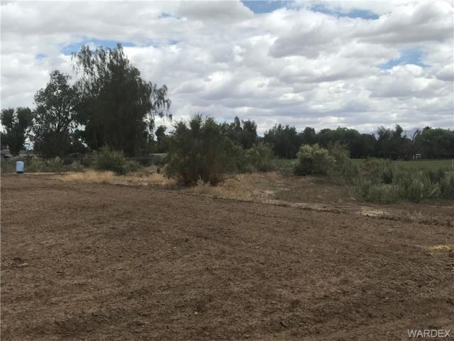 1795 E Ironwood Drive, Mohave Valley, AZ 86440 (MLS #958371) :: The Lander Team