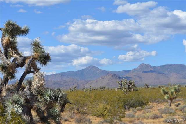 Lot 2342 Deadeye Road, Yucca, AZ 86438 (MLS #958521) :: The Lander Team