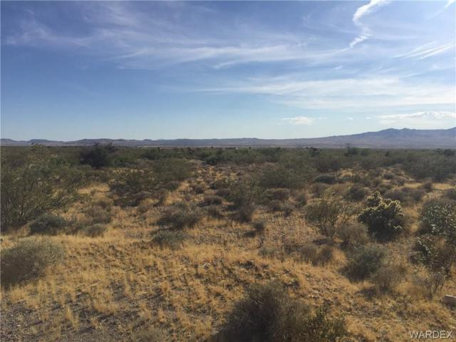GTAC #9 S-9 LOT 67 8TH/DEL NORTE (CITY WATER), Dolan Springs, AZ 86441 (MLS #958953) :: The Lander Team