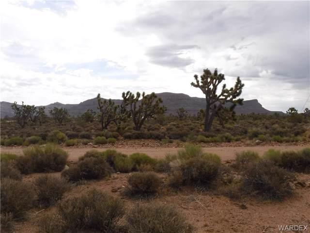 26695 N Bullhead Road, Meadview, AZ 86444 (MLS #959223) :: The Lander Team