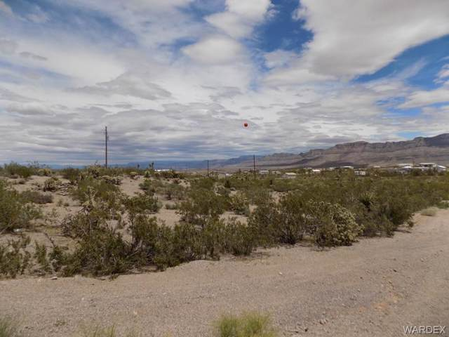 30290 N Sandy Point Drive, Meadview, AZ 86444 (MLS #959254) :: The Lander Team