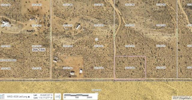 TBD 19th Street, Dolan Springs, AZ 86441 (MLS #959870) :: The Lander Team
