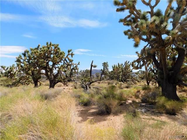 26276 N Pear Avenue, Meadview, AZ 86444 (MLS #960922) :: The Lander Team