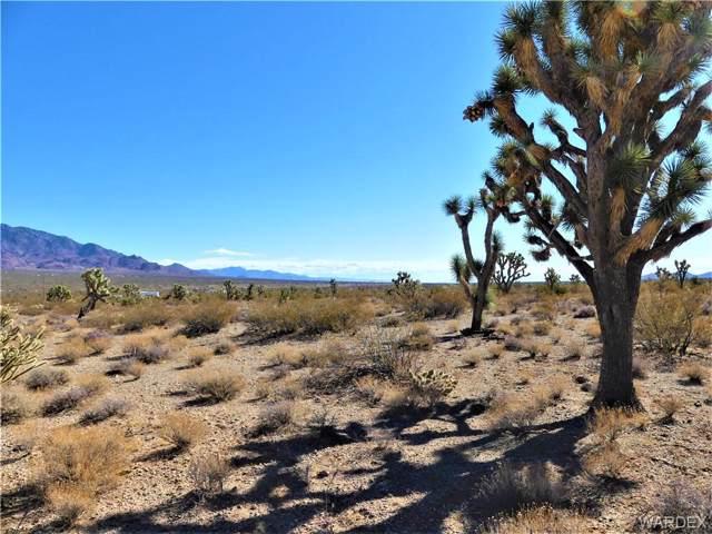 000 W Spring Drive, Meadview, AZ 86444 (MLS #961937) :: The Lander Team