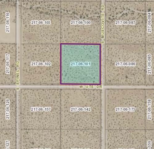 Lot 8 W Ute Drive, Golden Valley, AZ 86413 (MLS #961953) :: The Lander Team