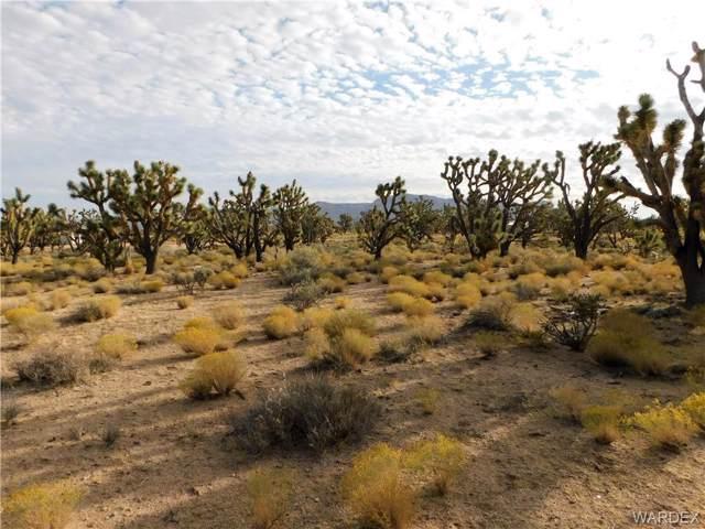 26116 N Driftwood Drive, Meadview, AZ 86444 (MLS #962082) :: The Lander Team