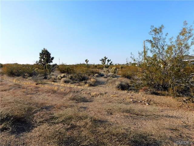 30425 N Hall Lane, Meadview, AZ 86444 (MLS #962394) :: The Lander Team