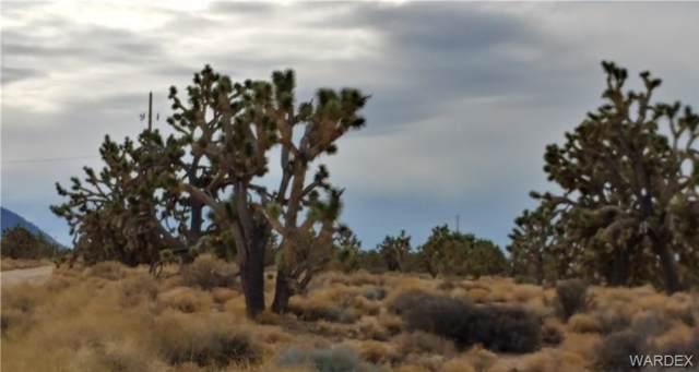 26211 N Apple Drive, Meadview, AZ 86444 (MLS #962427) :: The Lander Team