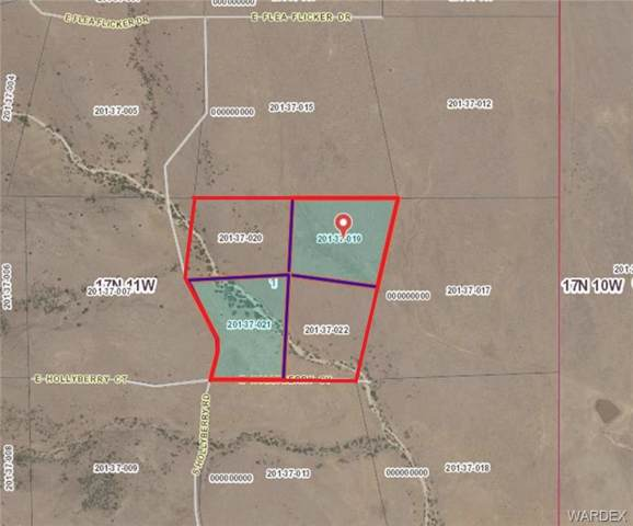 40.25 Acres E Hollyberry Road, Wikieup, AZ 85360 (MLS #962851) :: The Lander Team