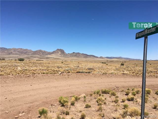Lot 144 Great Western Road, Wikieup, AZ 85360 (MLS #963803) :: The Lander Team