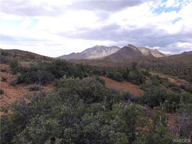 320 Cottonwood Creek 320 Acres Road, Kingman, AZ 86401 (MLS #964168) :: AZ Properties Team | RE/MAX Preferred Professionals