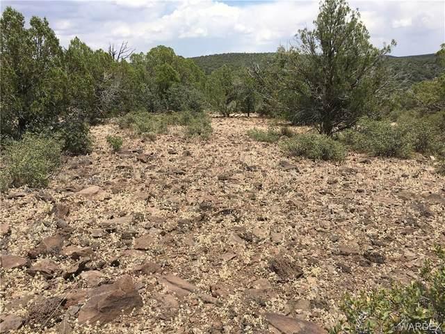 5322 N Kit Fox Trail, Kingman, AZ 86401 (MLS #964305) :: The Lander Team