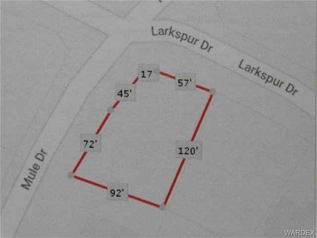 7714 E Larkspur Drive, Kingman, AZ 86401 (MLS #964774) :: The Lander Team