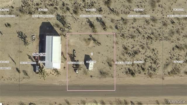 215 E Sumner Drive, Meadview, AZ 86444 (MLS #966494) :: The Lander Team