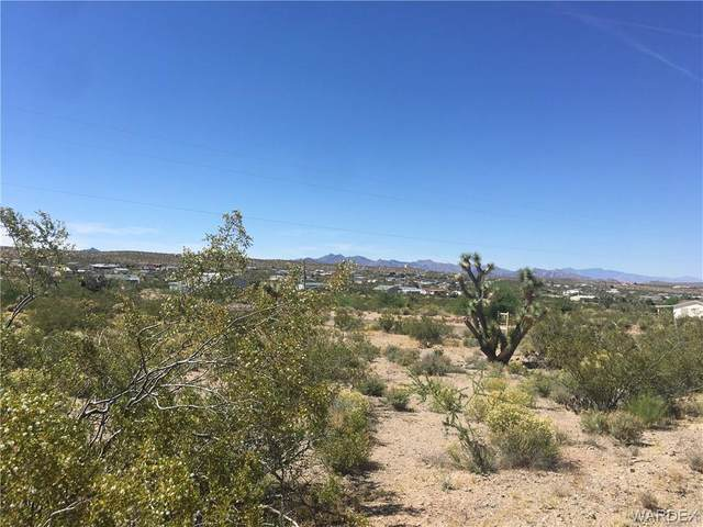 30205 N Separation(Owc Option) Drive, Meadview, AZ 86444 (MLS #968356) :: The Lander Team