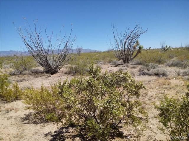 000 Cameron Rd, Yucca, AZ 86438 (MLS #968469) :: The Lander Team