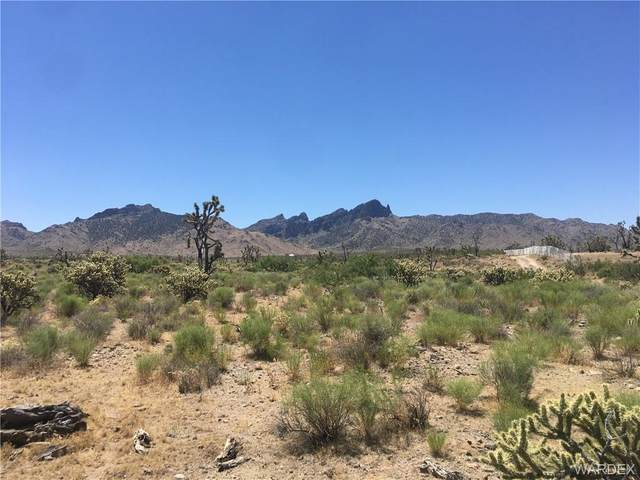 26836 N Yucca Road, Meadview, AZ 86444 (MLS #968551) :: The Lander Team