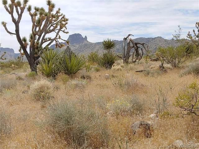 TBD N Pierce Ferry Road, Dolan Springs, AZ 86441 (MLS #969837) :: The Lander Team
