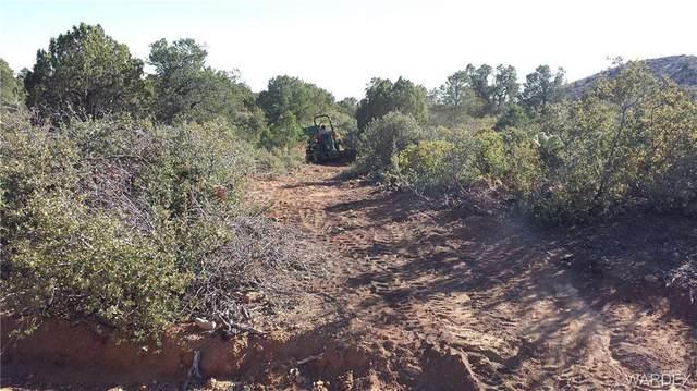 40 Acres Windmill Ranch Phase 2, Kingman, AZ 86401 (MLS #969945) :: The Lander Team