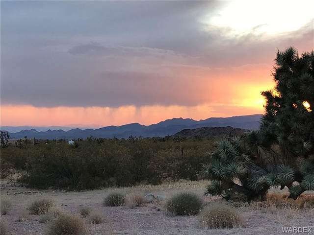 11964 S Hansen Road, Yucca, AZ 86438 (MLS #970013) :: The Lander Team