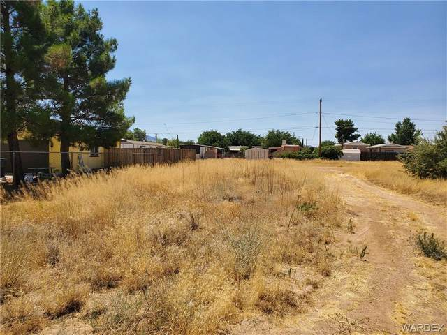 3072 E Mcvicar Avenue, Kingman, AZ 86409 (MLS #970862) :: The Lander Team