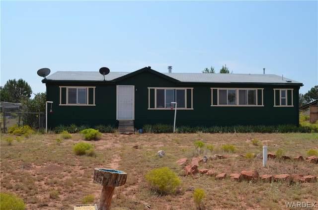 43850 W Roaming Way, Seligman, AZ 86337 (MLS #973484) :: The Lander Team